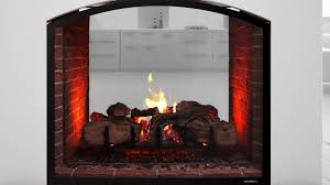 heat glo escape see through gas fireplace