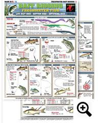Bait Rigging Chart 1 Freshwater Contains Illustrations