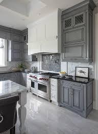 gray kitchen cabinets ideas grey kitchen caninets