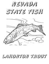 Cutthroat Trout Coloring Page