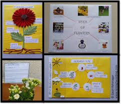 Flowers And Plants Easy To Make Charts And Project Ideas