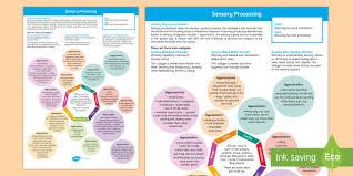 Sensory Processing Disorder Mind Map Sensory Processing
