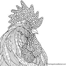Small Picture Rooster Coloring Page Heritage Acres Market LLC