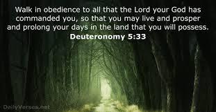 Light Of The World Verse Niv 30 Bible Verses About Following Dailyverses Net