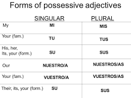 Spanish Possessive Pronouns Chart Words And Phrases To Describe Your Family In Spanish