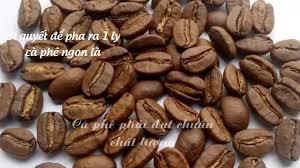 Cung cấp cà phê hạt rang pha máy espresso Motherland giá sỉ cho quán và  chuỗi xe đẩy - YouTube