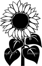 季節のイラスト ひまわりイラストの画像素材 花植物