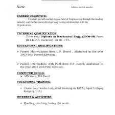 Resume Format For Mca Student Mca Freshere Format Freshers Career Objective For Fascinating It 23