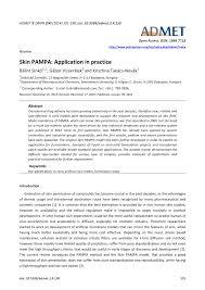 (PDF) Skin <b>PAMPA</b>: Application in practice