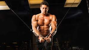 muscle up with the pec punisher workout routine