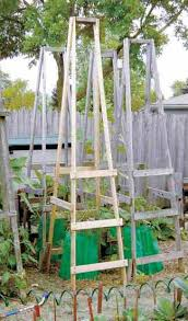 Diy tomato cage Tomato Plants Tomato Cage Folding Ladder You Should Grow 10 Ideas For Homemade Tomato Cages cheap Easy You Should Grow