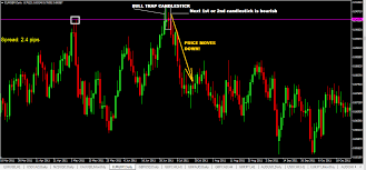 Best 3 Bull Trap Chart Patterns Traders Need To Know