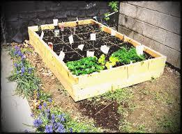 creative vegetable garden ideas backyard design back yard en parterre celtic small formal gardens gardenideas