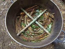 Mijn eerste ervaring met ayahuasca ...