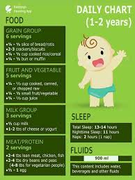 Can U Tell Me The Diet Chart Of 20 Months Old Baby