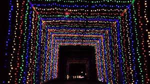 Yogi Bear Christmas Lights Christmas Lights At Jellystone