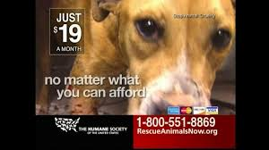 humane society ads. Wonderful Ads Intended Humane Society Ads A
