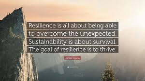 Jamais Cascio Quote Resilience Is All About Being Able To Overcome