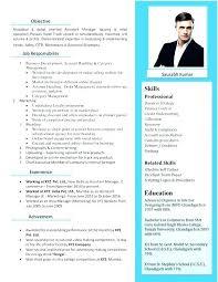 Attractive Resume Formats In A Nutshell Resume Template Attractive Delectable Attractive Resume Samples
