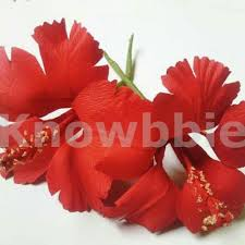 How To Make A Beautiful Flower With Paper Paper Flower Making Course Pune Hobby Course For Art Craft Lovers