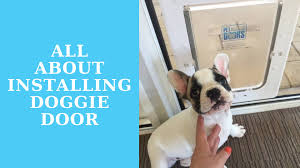 if you are adept with tools wood and following instructions a diy will usually a prepackaged pet door and install it themselves