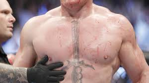 Bloody Brock Lesnar beats Undertaker at WWE Hell in a Cell Newsday