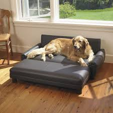 big dog furniture. because ollie is fancy and needs his own couch mission hills faux leather dog sofa big furniture f