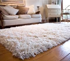 Shag rugs White Fuzzy Area Rug Pinterest White Fuzzy Area Rug Home Ideas Rugs Rugs On Carpet Bedroom