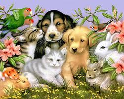 Πότε καθιερώθηκε η ημέρα των Ζώων;