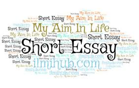 short essay on my aim in life easy ilmi hub