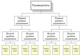 Менеджмент Разработка и принятие решений по проектированию  Линейные структуры могут быть характерны для очень простых социальных организаций в которых отсутствует функциональное разделение управленческой