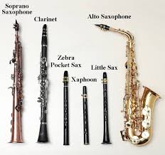 Saxophone Size Chart The Entry Level Pocket Saxophone For Music Amateurs And