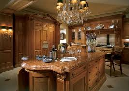 Honey Oak Kitchen Cabinets honey oak cabinets kitchen decorating ideas exitallergy 3518 by guidejewelry.us