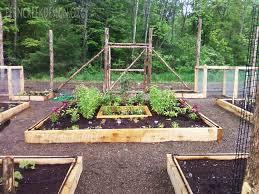 Small Picture Backyard Raised Vegetable Garden Design Best Garden Reference