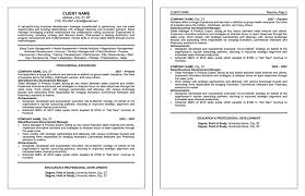 Sample Resume Professional Formats