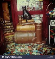 Quirky entrance to bookstore in Daylesford Victoria Australia