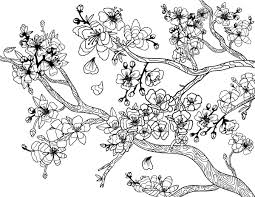 Small Picture Free printable cherry blossom adult coloring page Download it in