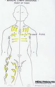 Manual Lymph Drainage Thigh Illustrated Lymph Massage
