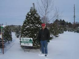 Pine Patch Tree Farm - Hastings