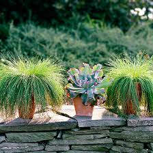 Garden Design Courses Enchanting 48 Ways To Use Ornamental Grasses In Your Landscape Better Homes