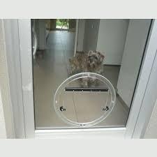 dog doors cat doors