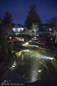 Aquascape Pond Lights Led Spotlights Make For Great Nighttime Water Garden Viewing