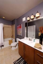 bathroom decor ideas apartments small