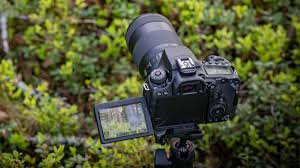 Best Dslr Digital Camera World