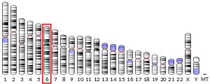 Prolactin Level Chart Prolactin Wikipedia