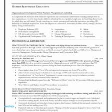 Career Change Resume Examples Developer Resume Examples Aurelianmg ...