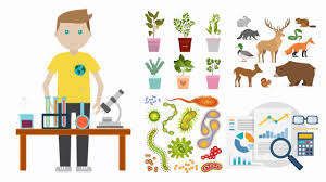 What Is An Ecologist Becoming An Ecologist Education Salary