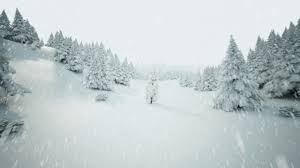 winter background images hd. Perfect Winter Winter Background With Falling Snow  Video HD 1080p Images Hd P