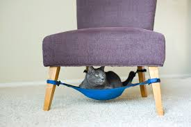 Chic cat furniture Shabby Chic Were Always On The Lookout For Chic Pet Furniture But As Any Feline Owner Goes Usually The Pretty Perch The Less Interested The Cat Is In Sitting There Glennwilsoninfo New Place For Felines To Recline The Cat Crib