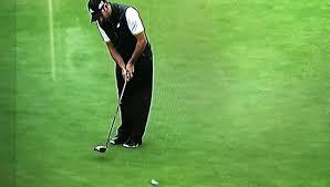 Resultado de imagen para golf madera 3